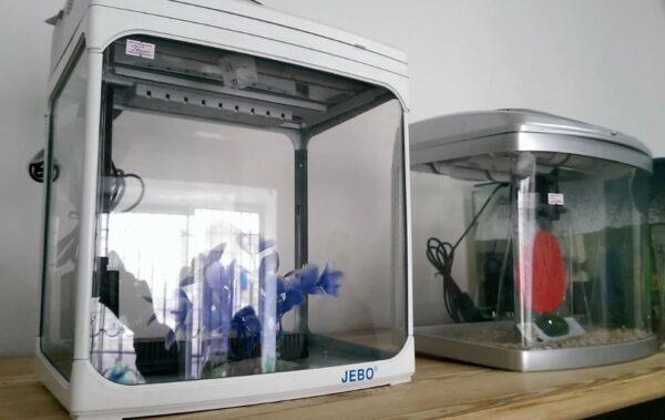 аквариумы купить